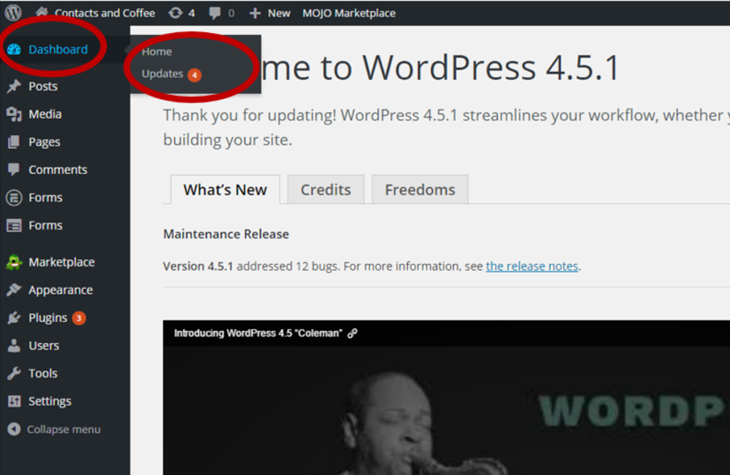Check for WordPress Updates