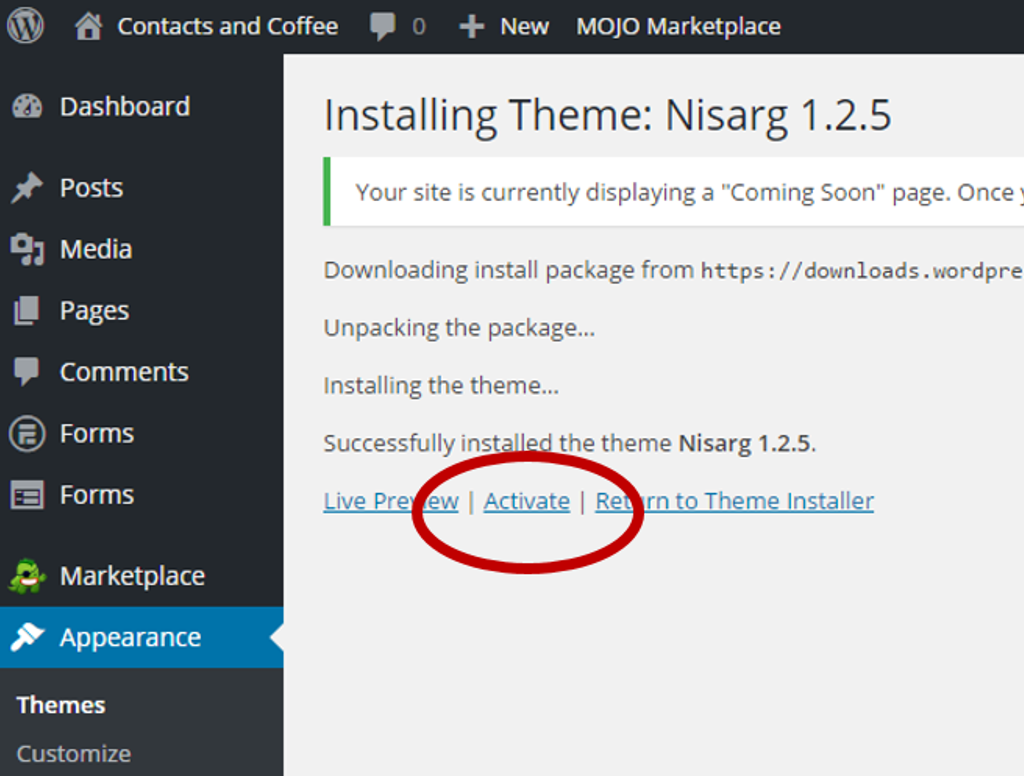 Install & Activate WordPress Theme